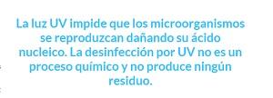 La luz ultravioleta impide que los microorganismos se reproduzcan dañando su ácido nucleico