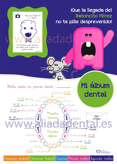 REGALO ALBUM DENTAL CON COFRE PORTADIENTES, MAPA DENTAL Y SOPORTE TIPO PEANA